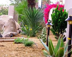 Small Picture How to create Desert Landscape Design front yard landscaping ideas