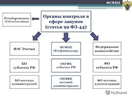 Презентация на тему Контрольная деятельность Росфиннадзора в  2 Органы