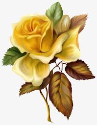hd hand painted oil painting flowers oil clipart flowers rose png image