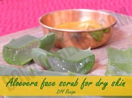 how to make aloe vera face scrub for dry skin diy recipe