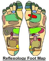 Reflexology Chart Top Of Foot Reflexology Foot Chart