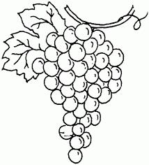 black and white grapes clipart. Modren Grapes Clipart Black And White Grapes In