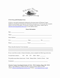 sample balance sheet for non profit sample non profit balance sheet or non profit donation form