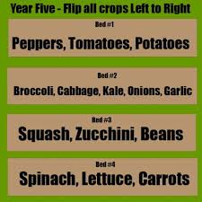 A Simple 4 Year Crop Rotation Plan Our Stoney Acres