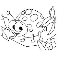 free color sheets. Delighful Free Smiling Ladybug Coloring Pages Intended Free Color Sheets R