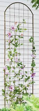 27 Garden Trellis And Lattice Ideas Wood U0026 MetalClimbing Plant Trellis