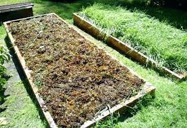 kitchen vegetable garden raised bed vegetable garden covers seaweed in raised garden bed kitchen garden vegetable seeds pune