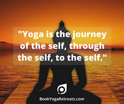 Yoga Quotes Fascinating 48 Yoga Quotes To Inspire Your Next Yoga Retreat BookYogaRetreats