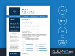 Natasa Blue Modern Resume Template Resumgocom