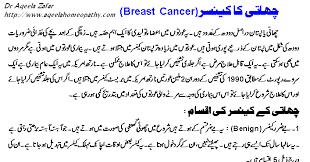essays on breast cancer co essays on breast cancer