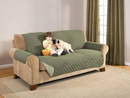 Top furniture covers sofas Seat Sofa Sofa Hitgroupinfo Sofa Pet Covers Medium Size Of Ts Sofa Pet Cover Covers With Straps