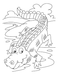 Small Picture Best Crocodile Coloring Pages 60 For Coloring Print with Crocodile