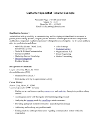 Examples Of Resume Summary For Customer Service Free Resume