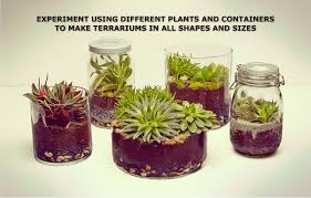 make your own terrarium ikea need sheet sphagnum peat moss activated charcoal pebbles soil
