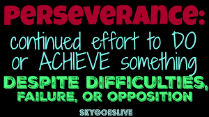 Image result for perseverance pic