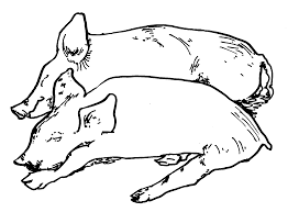 Small Picture New Pictures Of Pigs To Color 13 404