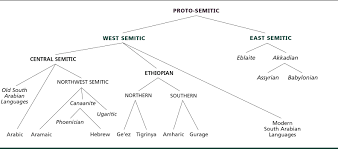 Languages Tree Chart Chart Of The Semitic Family Tree The American Heritage