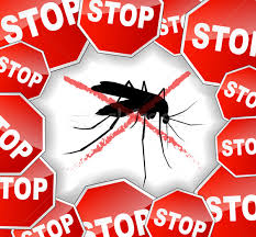 stop mosquitoes abstract concept stock photo nickylarson974
