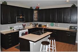 Dark Espresso Kitchen Cabinets Ideas About Espresso Kitchen Cabinets On Pinterest And Idolza