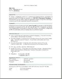 Customer Support Consultant Sap Functional Consultant Resume Fancy