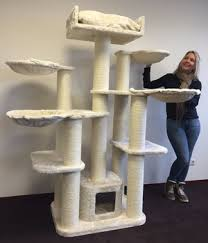 where to buy cat furniture. Unique Cat RHRQuality Cat Tree For Large Cat Maine Coon Fantasy Plus Cream  Furniture Scratcher House Intended Where To Buy