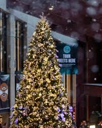... Rockefeller Pine Tree ...