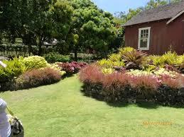 allerton garden reviews. allerton garden reviews
