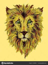 лев эскизы эскиз иллюстрация лев векторное изображение