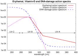Action Spectrum Temis Uv Index And Uv Dose Action Spectra