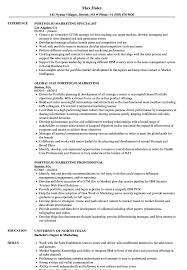 Portfolio Marketing Resume Samples Velvet Jobs