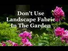 use landscape fabric in the garden