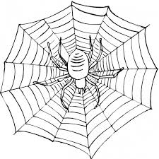 Small Picture Printable Spider Web Coloring Pages Coloring Me