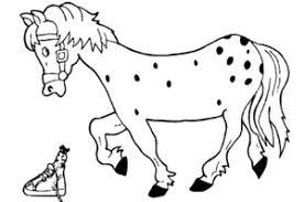 Paard Van Sinterklaas Kleurplaten Animaatjesnl
