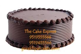 Belgian Chocolate Cake 500 Gm Delivery Gorakhpur Online Cakes For