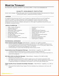 Resume Services Denver Best Of Professional Resume Writing Services
