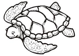 Small Picture Cartoon Picture Of Turtle Clip Art Library