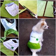 diy dog coat with dollar materials