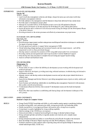 Etl Developer Resume ETL Developer Resume Samples Velvet Jobs 1