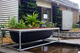 think making your own aquaponics setup would be too hard and costly think again my friends here s a straightforward and easy way to grow some waterwise