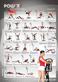 Power Plate Wall Chart Details About Whole Body Vibration Training Programme Level