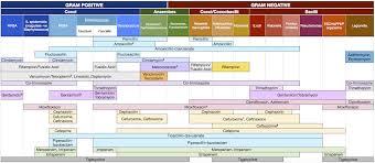 Antibiotic Chart Appendix 5 Antibiotic Overview