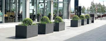 big outdoor plant pots custom planters reinforce upscale appeal at designer ping mall big outside plant