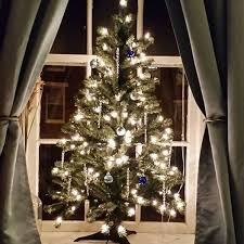 770 Best Christmas Trees Images On Pinterest  Christmas Time What Kind Of Christmas Trees Are There