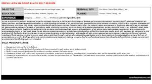 Lean Six Sigma Black Belt Resume & Cover Letter | Cv Letters ...