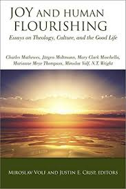joy and human flourishing essays on theology culture and the  27475137