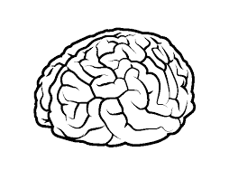 Small Picture Good Brain Coloring Page 19 In Line Drawings with Brain Coloring
