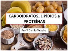 carboidratos lipídios e proteínas