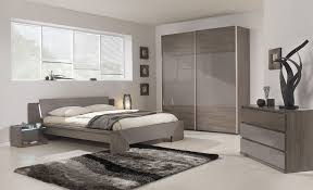 Gray Ash Mirrored Contemporary Bedroom Furniture Ideas