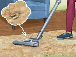 vacuum cleaner smells. Plain Smells Image Titled Get Dog Smell Out Of The Carpet Step 1 With Vacuum Cleaner Smells T