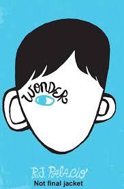 review wonder